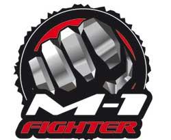 Результаты отборочных поединков M-1 Fighter 3